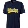 Michigan Wolverines Ball Park Jersey
