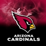 Arizona Cardinals NFL On Fire Towel